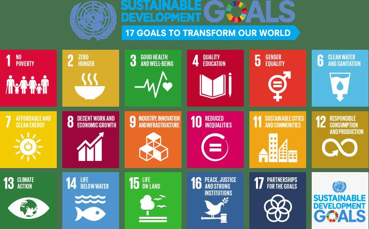 17 SDGs in Mining