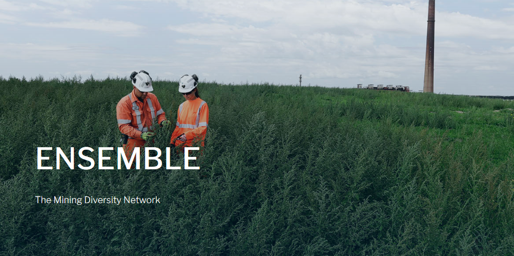 ENSEMBLE: The Mining Diversity Network